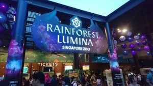Rainforest Lumina ở Singapore Zoo